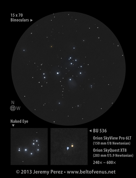 Positive Sketch of the Pleiades and BU536