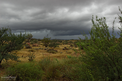 Updraft base in a line of convection as seen looking west from Highway 93 about six miles south of I-40. 8:10 AM / 1510Z